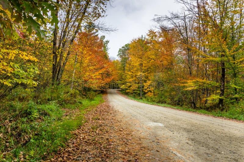 Autumn Back Road stock image