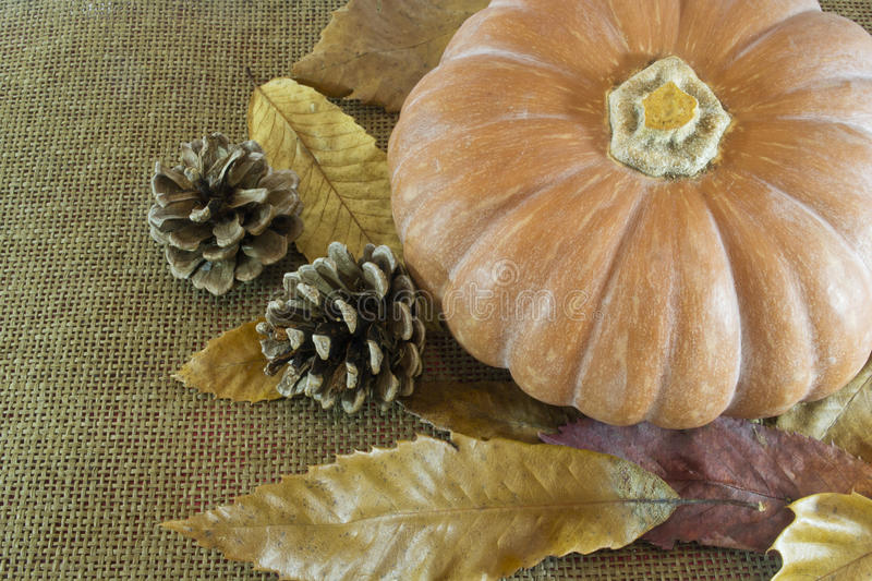 Autumn background. Autumn composition with pumpkin, pine cones and leaves stock image