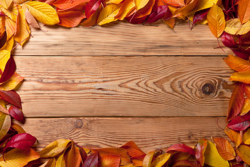 Autumn Background. Autumn leaves from fruit trees on wooden background with copy space. Top view royalty free stock photography