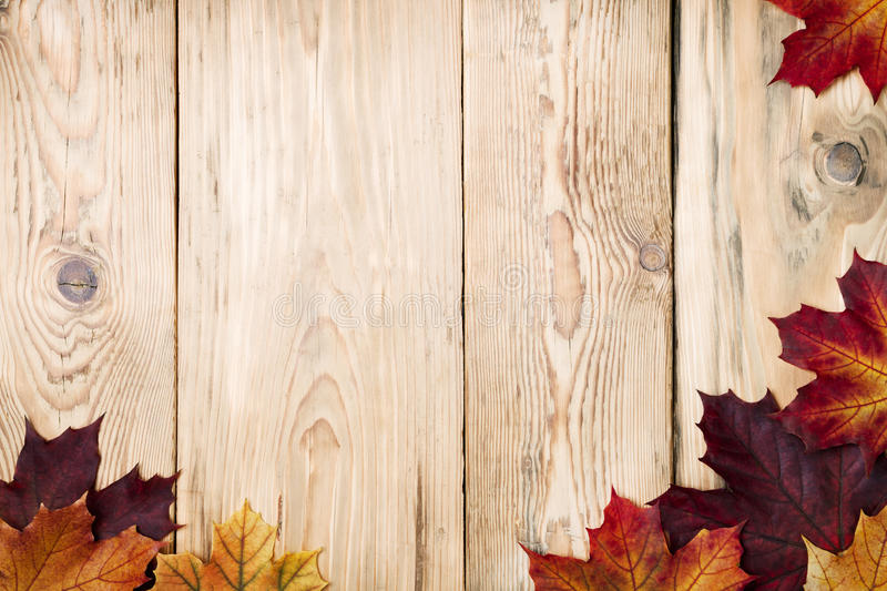 Autumn Background. Autumn maple leaves on wooden background with copy space. Top view stock images