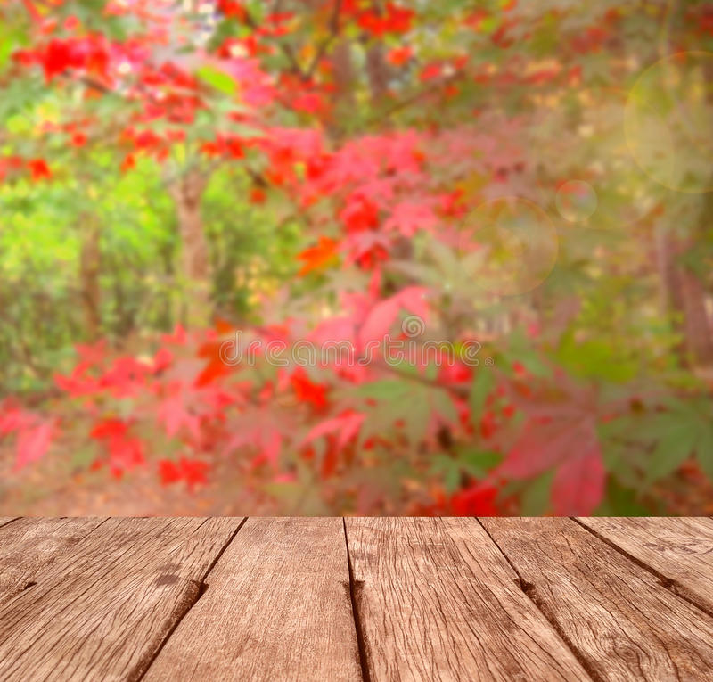 Free Autumn Background Royalty Free Stock Photography - 62199127