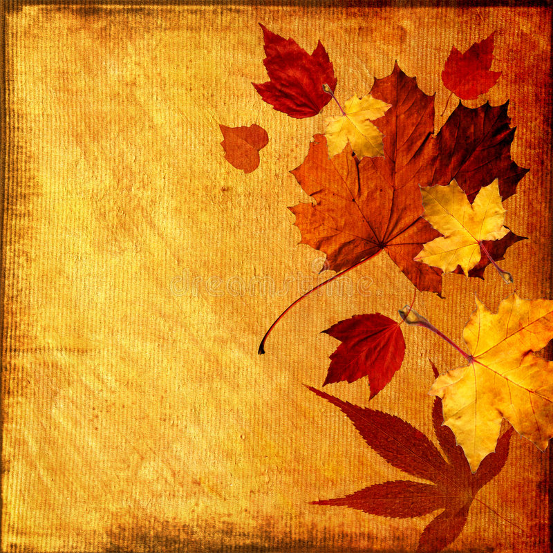 Autumn background stock illustration