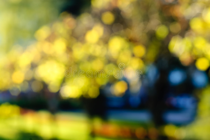Autumn background blurred by bokeh stock images