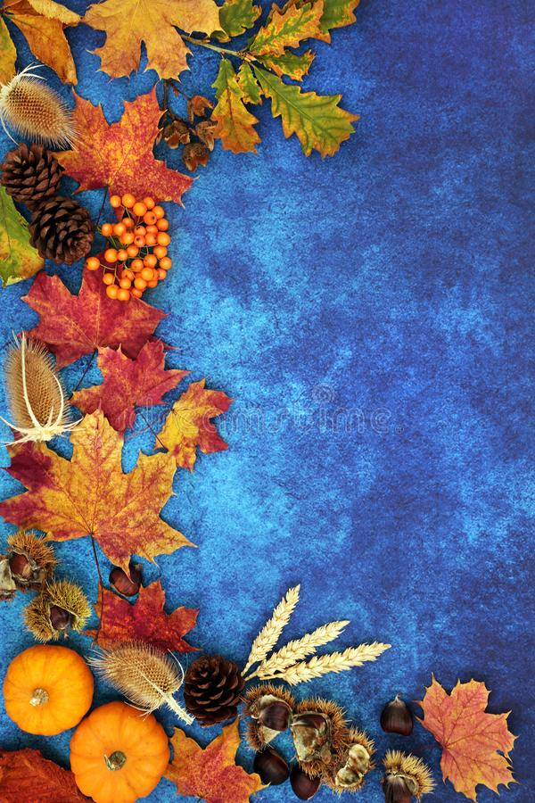 Autumn Background Border Composition. With food, flora and fauna on mottled blue background. Top view. Harvest festival or Halloween theme royalty free stock images