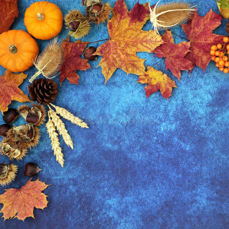 Autumn Background Border. With food, flora and fauna on mottled blue background. Top view. Harvest festival or Halloween theme stock photos
