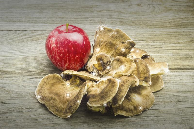 Hello autumn apple mushroom card foto. Apple mushroom Autumn,backgroundcard,design isolated wood,wood background, foto vector illustration
