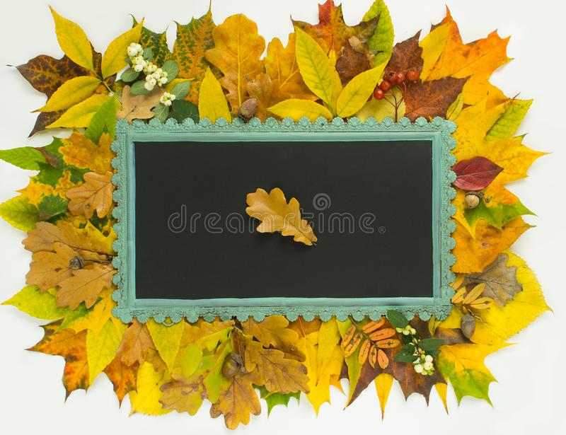 Autumn background. Colorful autumn leaves frame. Chalkboard on autumn leaves background royalty free stock photo