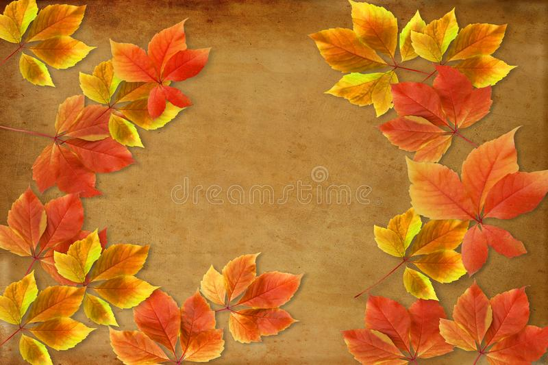 Autumn background. Colorful red and orange fall leaves on grunge background with copy space for writing royalty free stock photo