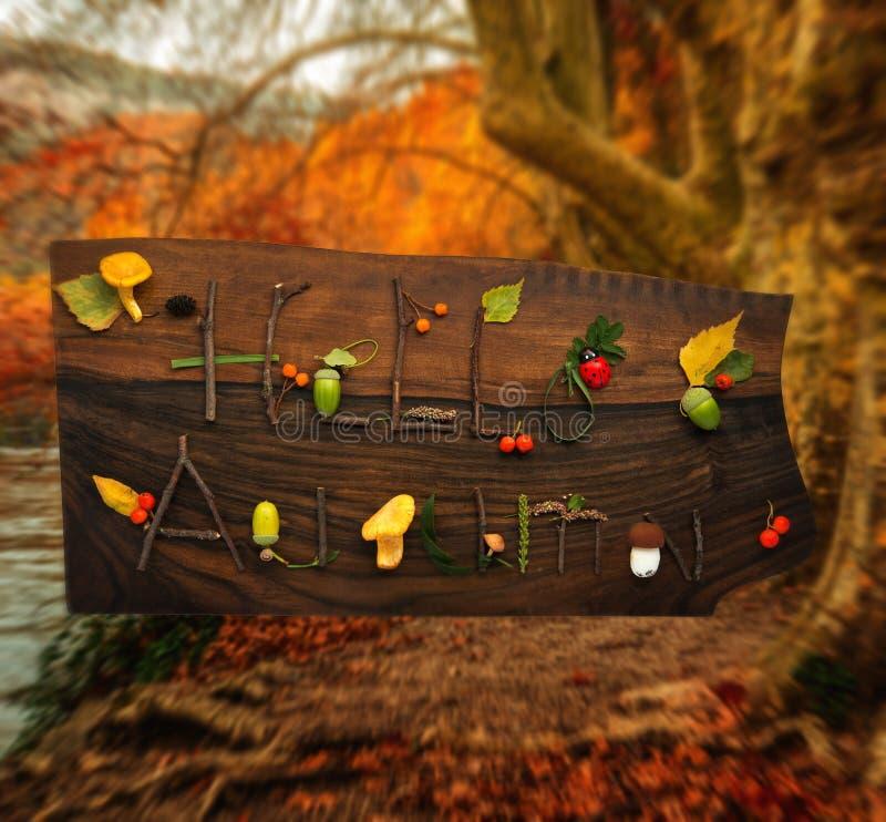 Download Autumn background stock image. Image of language, mushroom - 34644801