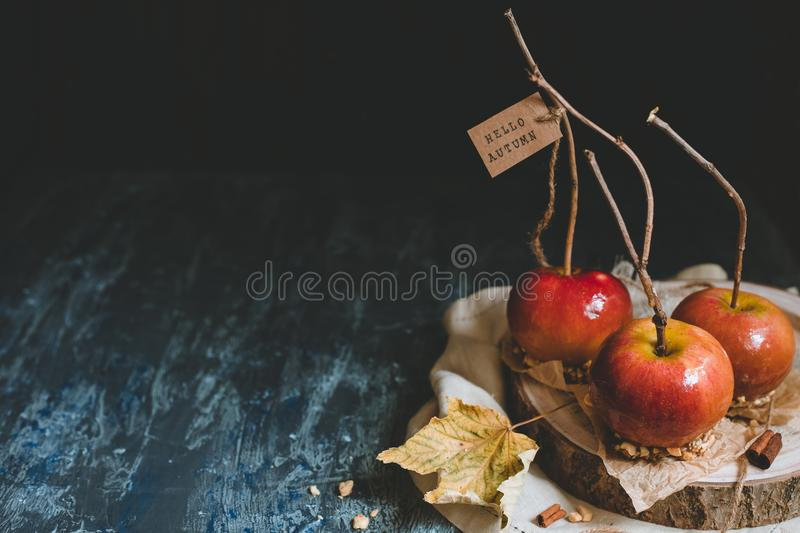 Autumn background with copy space. Traditional caramel apples with brunch sticks. royalty free stock images