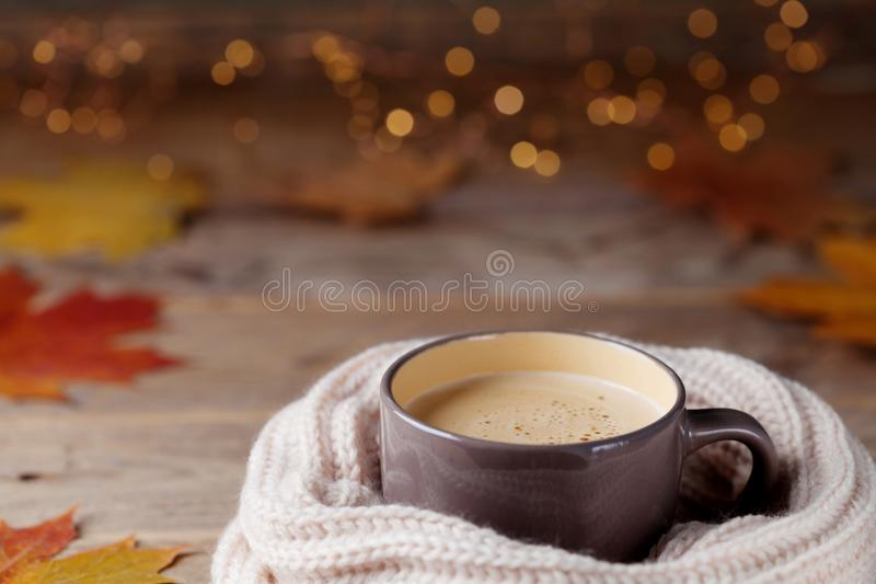 Autumn background from cup of cocoa or coffee in knitted scarf on wooden table decorated with fall leaves. Cozy hot drink. Autumn background from cup of cocoa royalty free stock image