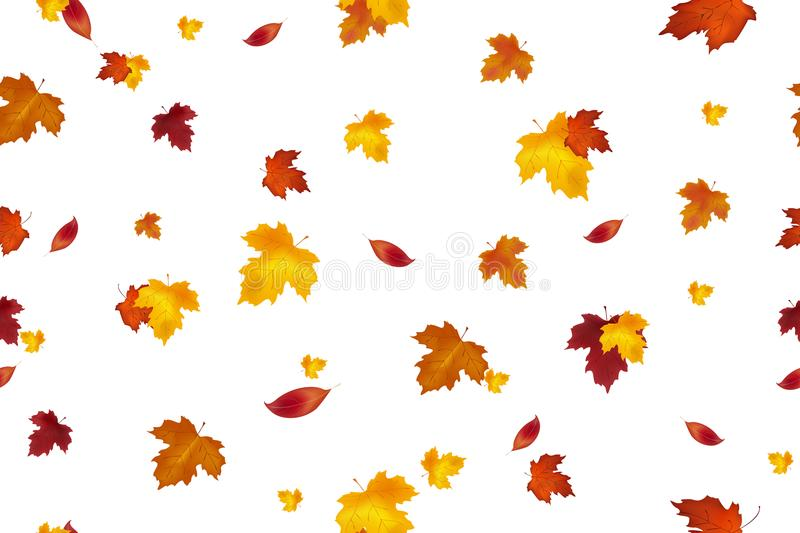 Autumn background design. Seamless pattern. Autumn falling red, yellow, orange and brown leaves isolated on white background. Vect stock illustration