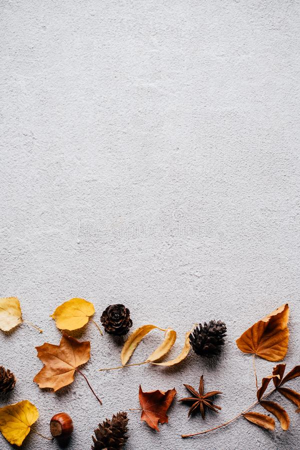 Autumn background, fall concept, thanksgiving day. Autumn vibes. Border made of dried leaves and pine cones on stone background. Seasonal background, fall royalty free stock photos