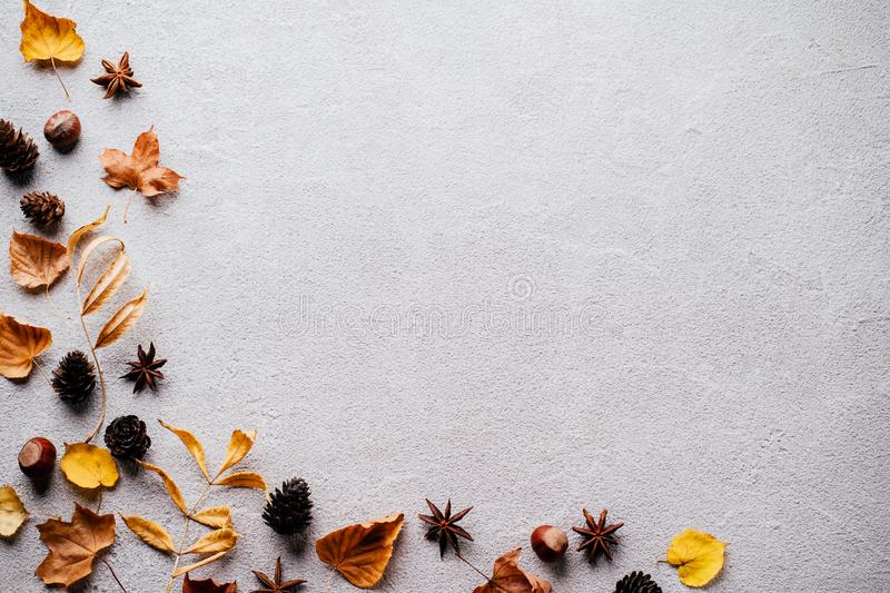 Autumn background, fall concept, thanksgiving day. Autumn vibes. Frame made of dried leaves and pine cones on stone background. Seasonal background, fall concept royalty free stock photo
