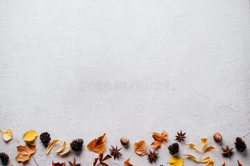 Autumn background, fall concept, thanksgiving day. Autumn vibes. Template made of dried leaves and pine cones on stone background. Seasonal background, fall stock images