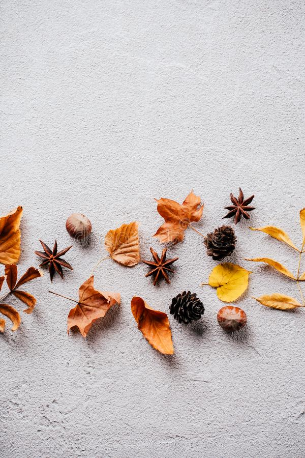 Autumn background, fall concept, thanksgiving day. Autumn vibes. Template made of dried leaves and pine cones on stone background. Seasonal background, fall stock photography