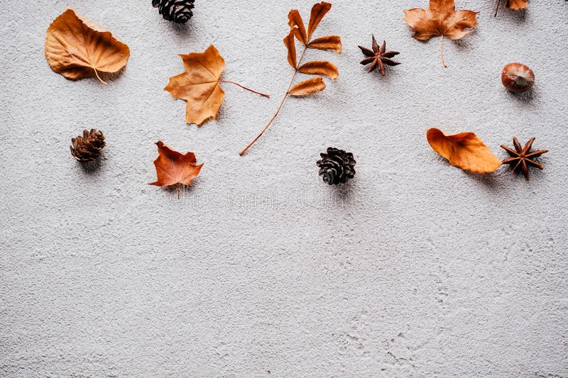 Autumn background, fall concept, thanksgiving day. Autumn vibes. Template made of dried leaves and pine cones on stone background. Seasonal background, fall royalty free stock photo