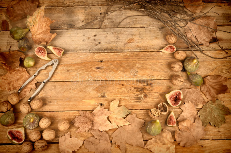 Autumn background with fresh figs royalty free stock image