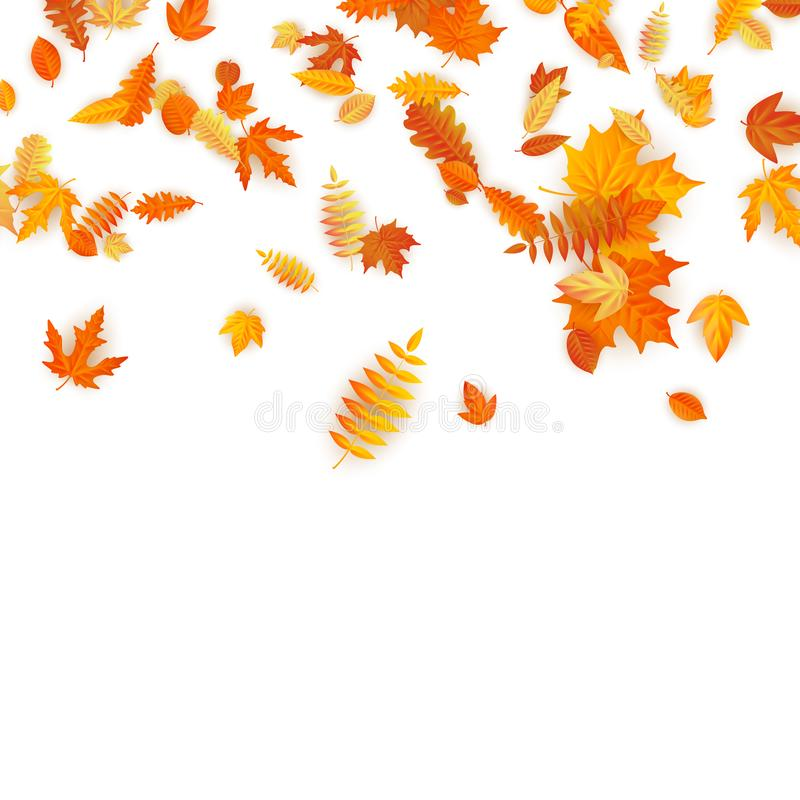 Autumn background with golden maple, oak and others leaves. EPS 10 royalty free illustration