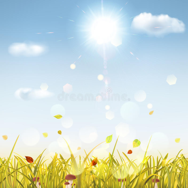 Autumn background with grass, mushrooms, sun and clouds stock illustration