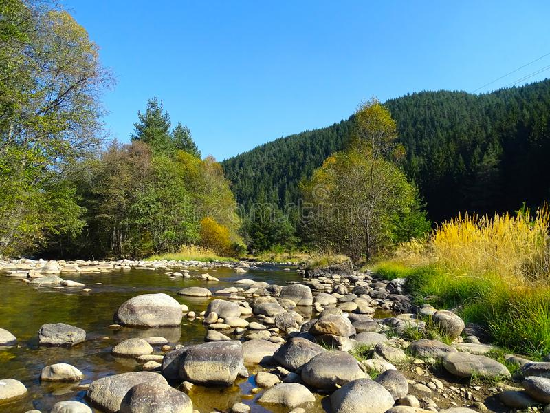 Autumn background. Landscape of autumn. Warm whether in the  Bulgarian forest royalty free stock photo