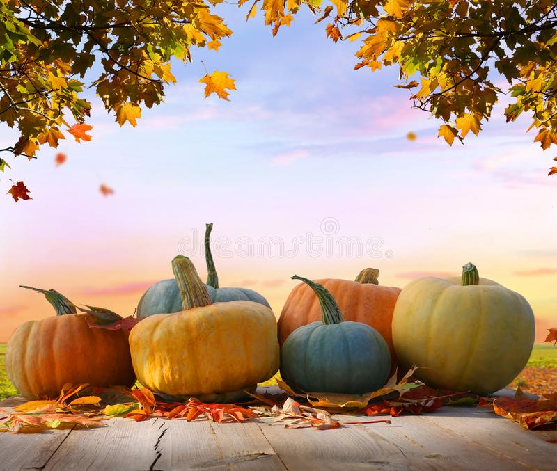 Autumn background with leaves and pumpkins.Harvest or Thanksgiving background stock photo