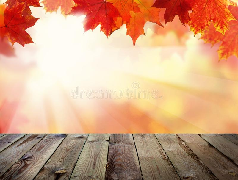 Autumn Background med nedgångsidor, abstrakt ljus ånga royaltyfria foton