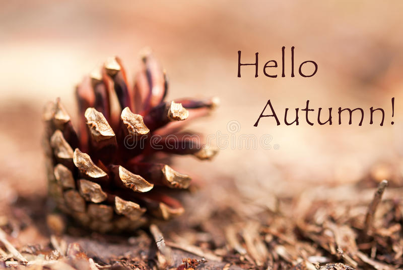 Autumn Background met Hello-de Herfst royalty-vrije stock afbeelding