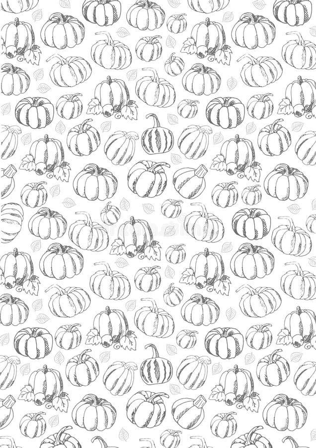 Autumn Background met Pompoen voor het winkelen verkoop, promoaffiche en kaderpamflet, Webbanner Vectorillustratiemalplaatje vector illustratie