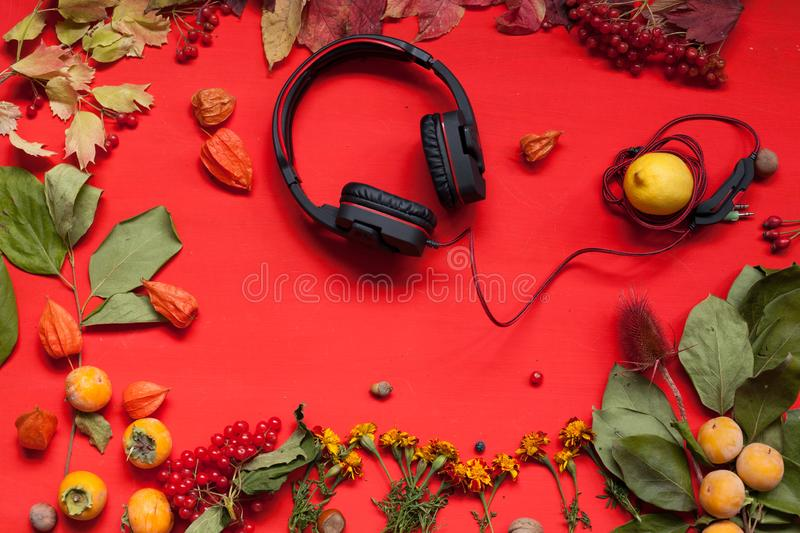 Autumn background music headphones yellow leaves in the red table stock photo