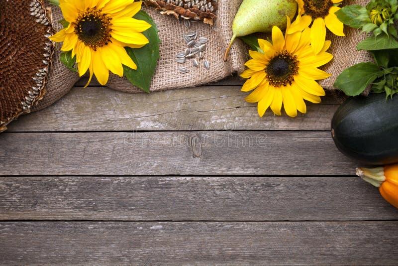 Autumn Background na madeira fotografia de stock