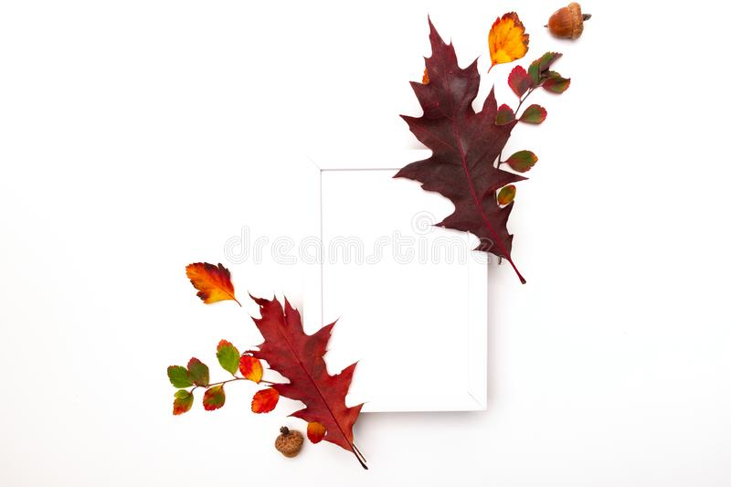 Autumn background with natural decor. White photo frame, autumn dried leaves. Flat lay, top view. Copy space for seasonal promotio royalty free stock photography