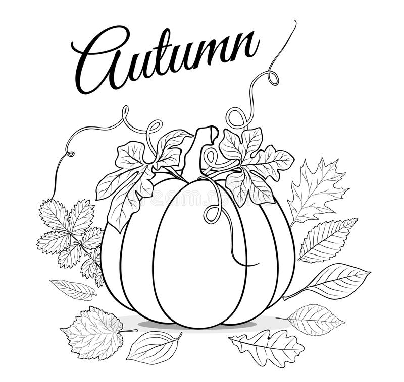 Autumn background with pumpkin and leaves for coloring book vector royalty free illustration