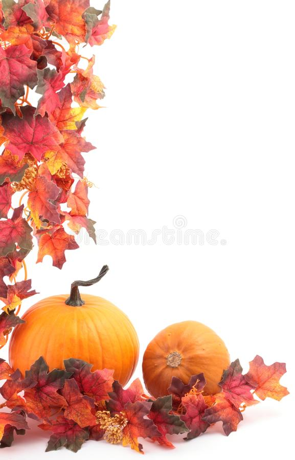Download Autumn background stock image. Image of frame, food, autumn - 33404179