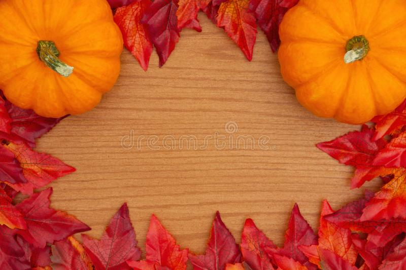 Autumn background with a pumpkins and red and orange fall leaves royalty free stock image