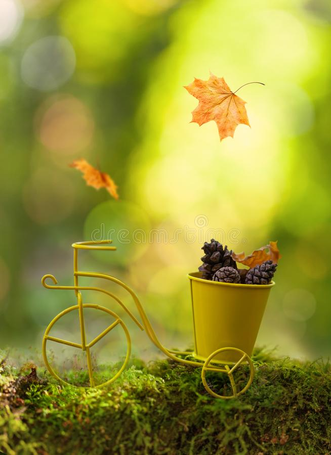 Autumn background with a retro toy miniature bicycle, pine cones and autumn leaves. Walk in forest, autumn season, bokeh. Background. Soft focus royalty free stock photo