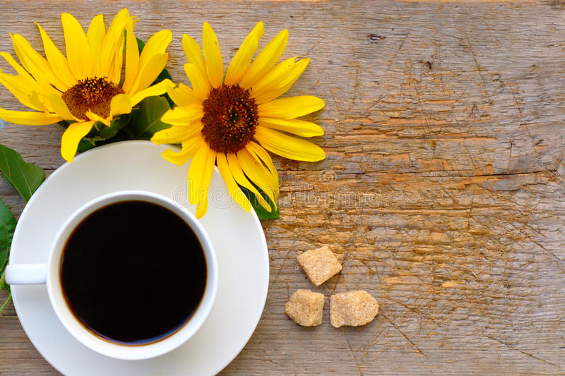 Autumn Background With Sunflowers And kaffe royaltyfri bild