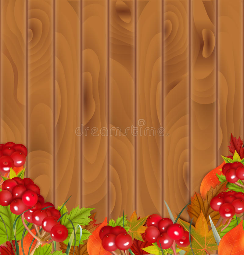 Autumn background With Viburnum and Colorful Leaves. Vector illustration royalty free illustration