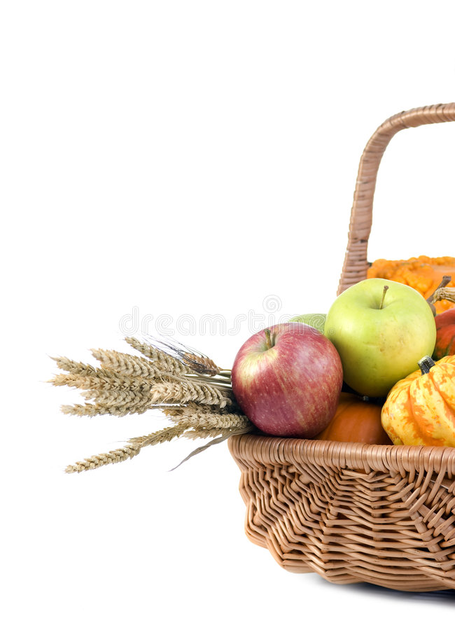 Download Autumn basket stock image. Image of colorful, gourd, thanksgiving - 3138137