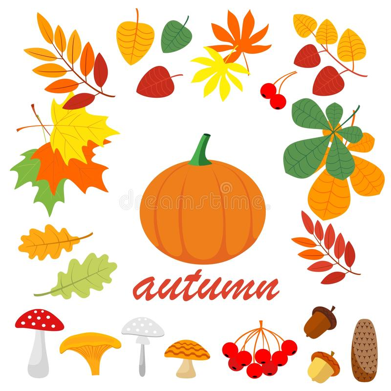 Autumn beautiful natural materials. Leaflets, mushrooms, twigs, cones, acorns, grass royalty free illustration