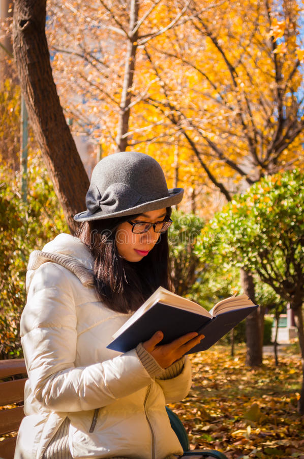 Autumn beautiful young reading woman royalty free stock photos