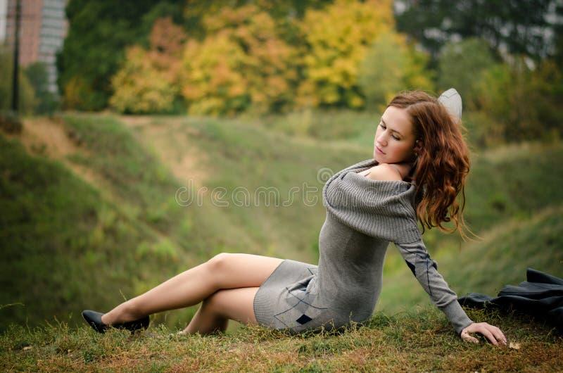 Download Autumn beauty stock image. Image of dark, black, morning - 27513865
