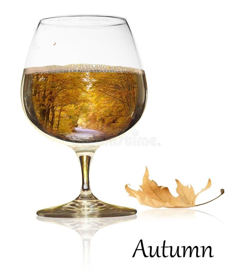 Free Autumn Beauty Stock Photos - 28924083