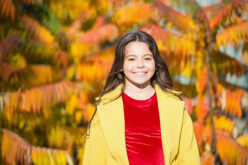 Autumn beauty. Girl smiling face walking in park. Upcoming events. Trendy girl in autumn coat. Weather forecast. Happy stock photo