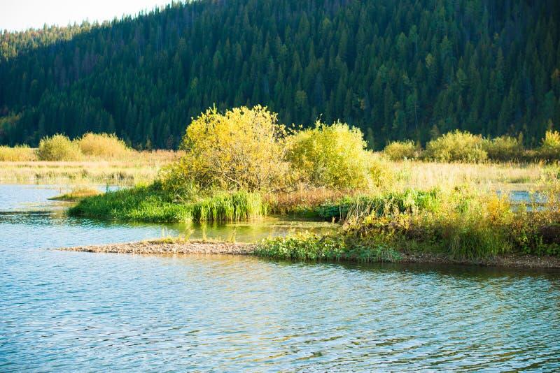 Autumn. stock images