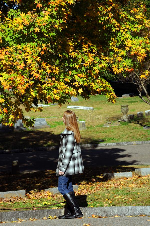 Autumn Begins no cemitério de Elmwood imagens de stock royalty free