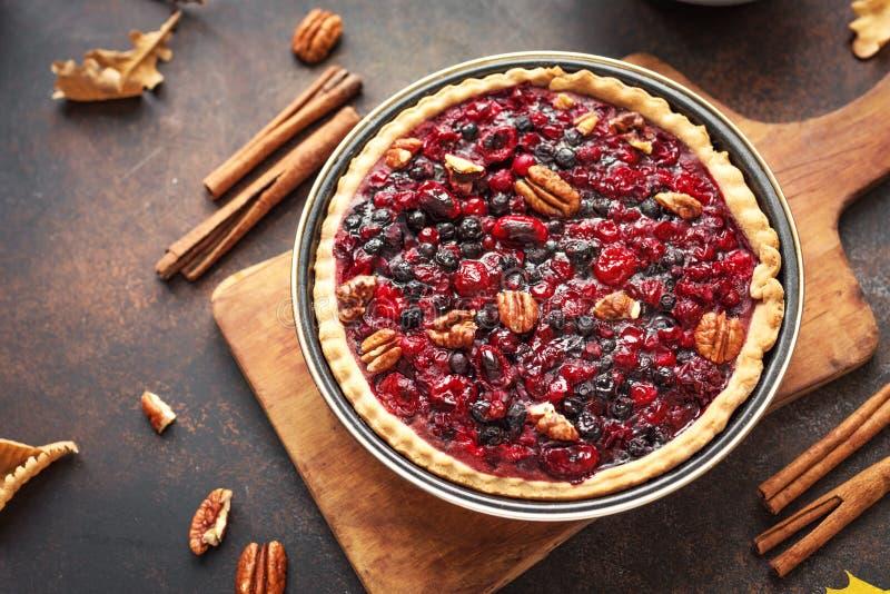 Autumn Berries et tarte aux noix de pécan images libres de droits