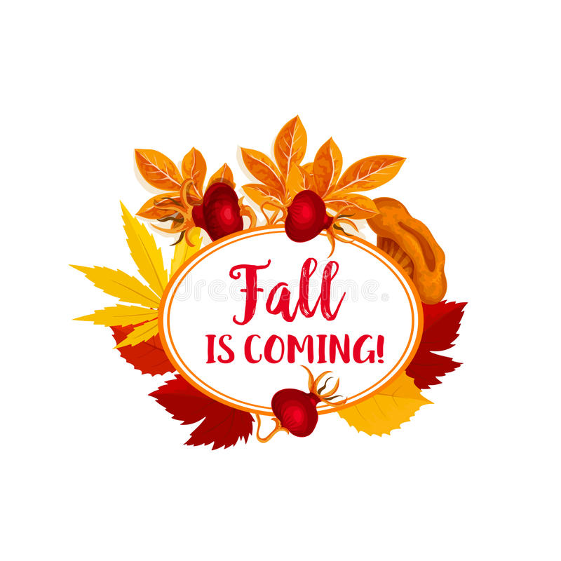 Autumn berry for vector fall is coming poster stock illustration