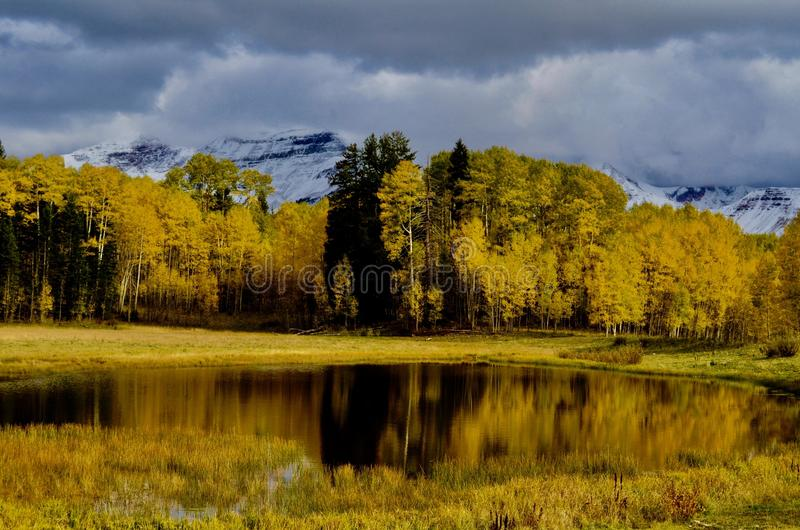 Autumn Birches and Dibé Nitsaa, Mount Hesperus, San Juans, Colorado. Autumn Gold and Mountain Blues. San Juan Mountains, forest road 561. Follow the signs to stock photos