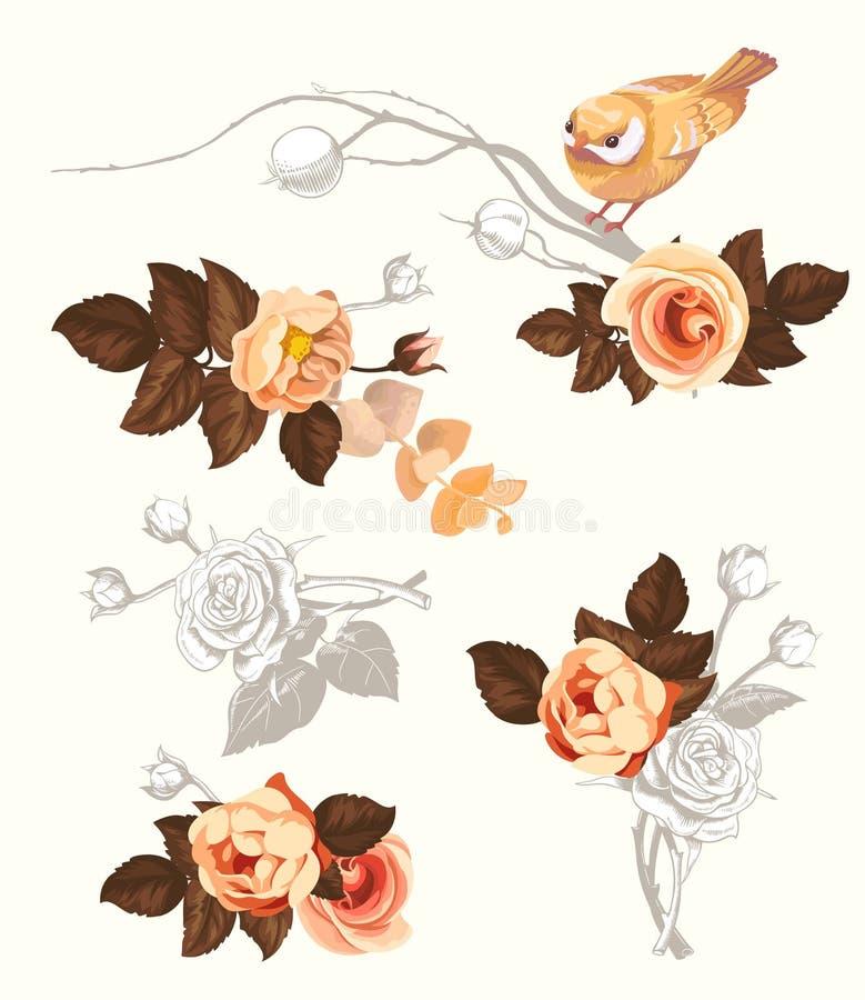 Autumn Bird Flower Branch Watercolor-Dekorations-Ausrüstung für Einladungs-Karte Blumensommer-Zusammenfassung Rose Bouquet mit vektor abbildung